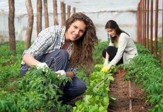 Agricultura Sustentável – UFCD 7580 | 50h | Formação Base PDR 2020