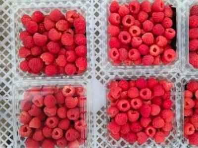 Métodos de conservação e transformação de produtos agroalimentares – UFCD 7594 | 50h