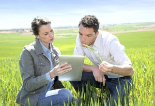 Gestão da Empresa Agrícola – UFCD 2889 | 50h | E-Learning