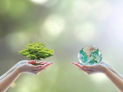 Sensibilização Ambiental (especialistas)   40h